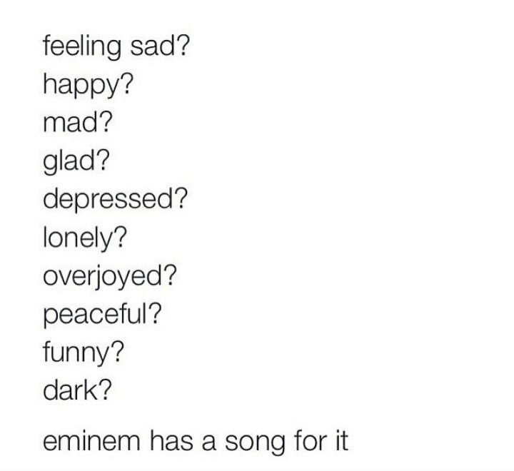 Slim Shady Song