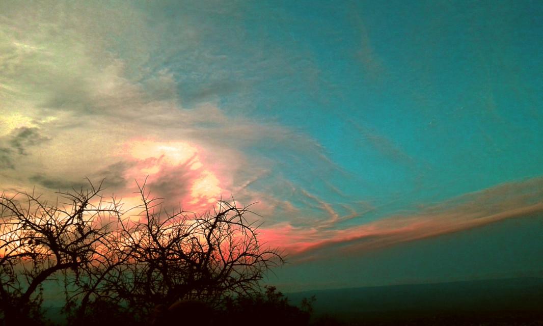 #wapatumnvibes #naturephotography #edit #sky #clouds #tree