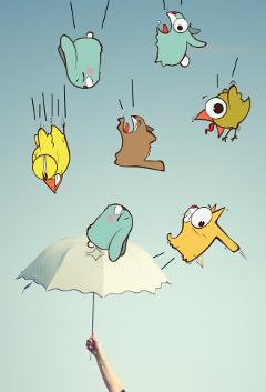 freetoedit raining_animals editfor