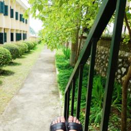 freetoedit green school