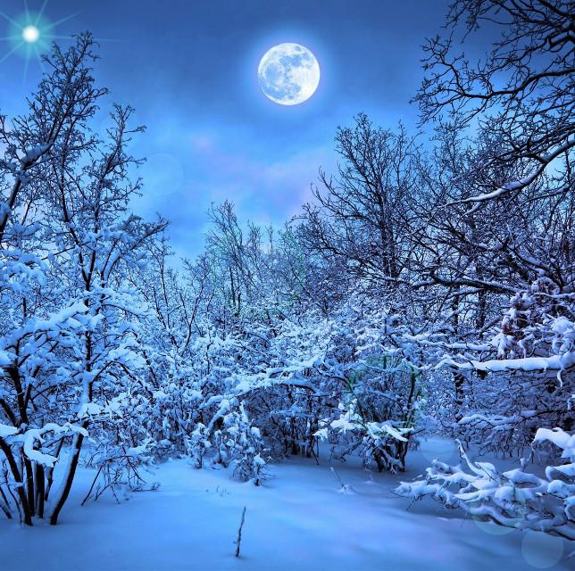 #snow  #photography  #winter   #natureislife #FreeToEdit