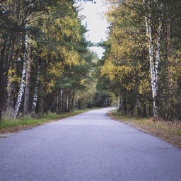freetoedit art beautiful beauty autumn