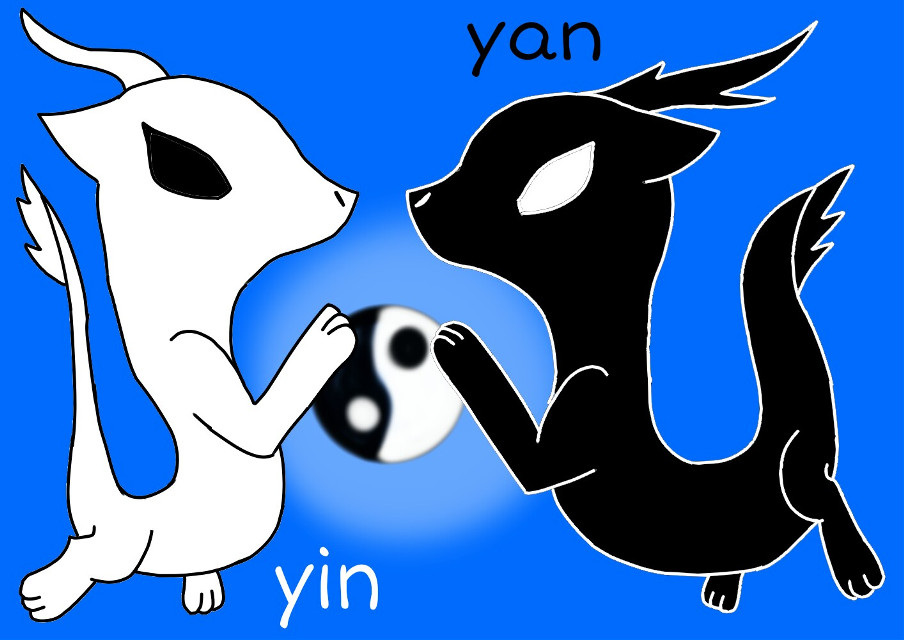 Since I got 90 more followers,I would like to tell you all a Chinese story! Name:ying(black)yang(white) Age:more than 100 years Story:yingyang(陽,陰)is a Chinese kung fu icon that is two elements, ying(known as negative, night,cold,soft,passive,intuitive)yang(known as positive, day,hot,hard,active,logical). The icon of two elements usually  used as dragons, tigers or foxes. Chinese dictionary: Ying陰,Yang陽,negative負,positive正,hot熱,cold冷,day日,night夜,dragons龍,tigers虎,foxes狐,soft軟,hard硬. Well ill start a Q&A next,stay tune for questions. Tags:   #yingyang #dragon #tiger #fox #elements