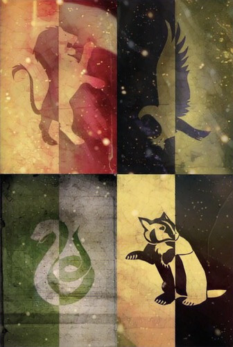 What's your house? I' m slytherin . #gryffindor #slytherin #ravenclaw #hufflepuff #harrypotter#potterhead#fangirl#books#booknerd#harrypotterhouses   Please comment your house. #FreeToEdit
