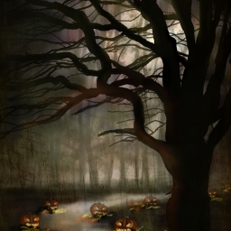 wdppumpkin drawing artwork halloween spooky