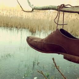 freetoedit shoe shoelaces branch ice