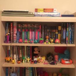 bookshelf books figures FreeToEdit